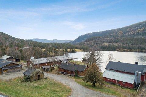 MIDT I NATUREN: Bygningene ligger i utkanten av Kvisle skog, som er en del av Trillemarka-Rollagsfjell naturreservat.