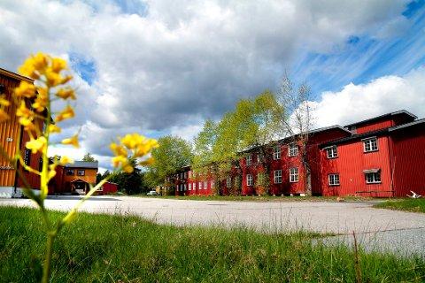 MÅ ORDNE OPP: Et branntilsyn ved Rippit Kongsberg Aktivitetspark AS på Heistadmoen avdekket en rekke avvik.