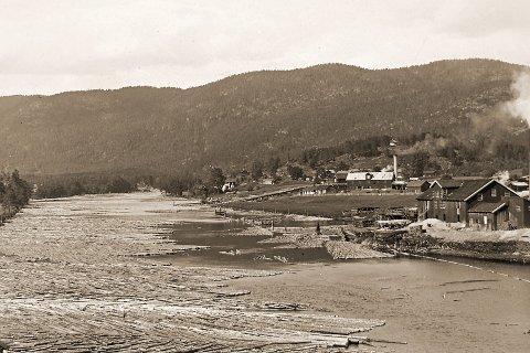 FLØTING: I 1921 ble det fløtet store mengder tømmer i Lågen. Men det ble ikke etterrensket ovenfor Kongsberg fordi vannføringen var for liten etter at Tunhovddammen ble stengt.