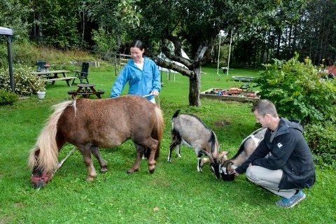 IDYLL: Mari driver Utelykke aktivitetsgård, og har en rekke ulike dyr boende på småbruket. Hun frykter at utbyggingsprosjektet vil gå ut over arbeidsplassen hennes.