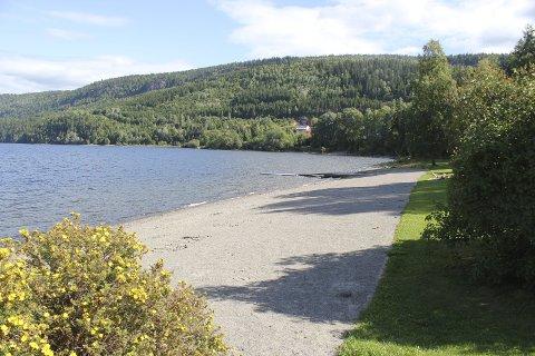 IDYLLISKE SVANGSTRAND: Bølgene fra Holsfjorden slår innover idylliske Svangstrand i Sylling. Nå vil Oslo kommune hente drikkevann fra denne fjordperlen.