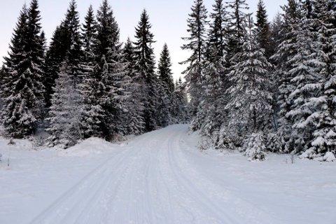 Skiføre i marka: Vi er nok langt fra slike forhold som det var i 2013, men det er gode skiforhold rundt Eiksetra - og de blir holdt godt ved like.