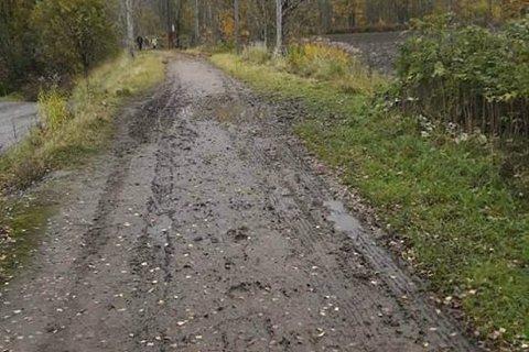 IKKE PENT: Rolf Burud synes ikke det er noe særlig å skulle gå på turveien når den ser slik ut.