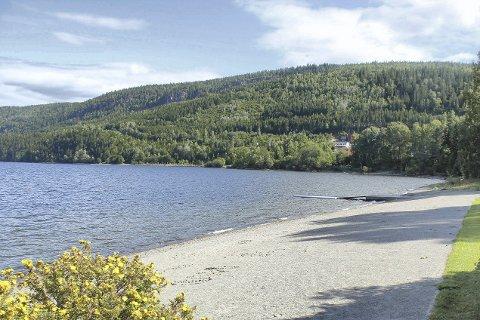 MED HJERTE FOR SVANGSTRAND: Innsenderen mener fjordstien på østsiden av Holsfjorden burde hatt sitt utgangspunkt ved Svangstrand.