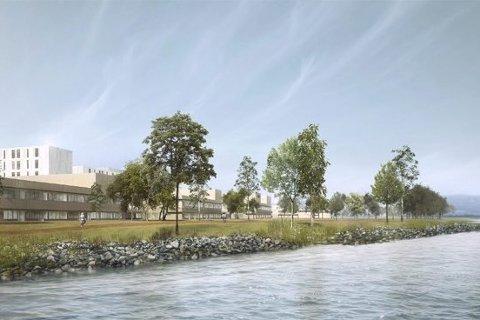 Skolen kan ligge ved sykehuset: Slik kan det nye sykehuset på Brakerøya bli seende ut. Illustrasjon: Vestre Viken