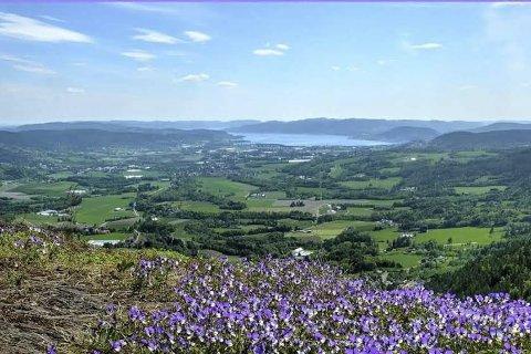 Sentral: Av Norges 426 kommuner blir Lier rangert som nummer 17 når det gjelder sentralisering. Arkivfoto: Roger Ask Simonsen