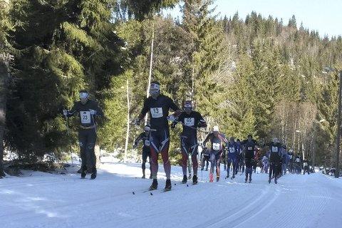 DRØMMEFORHOLD: Det kunne ikke blitt bedre forhold under den 60. utgaven av Ulveløpet. Rundt 90 løpere deltok i årets renn.
