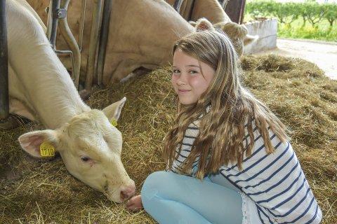 På bølgelengde: Mie Amalie Vilrik Nerdrum fra Egge skole har fått veldig god kontakt med kuene på Helgerud gård, og synes det er fint å kunne tilbringe en dag på gård rett før sommerferien begynner.