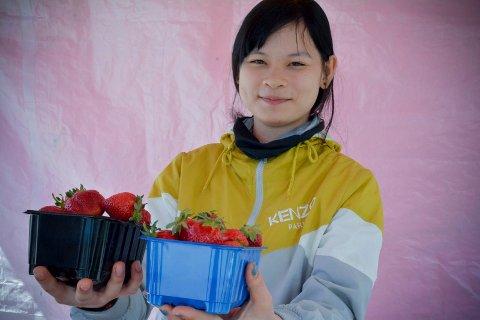 KORTREISTE BÆR, LANGREIST SELGER: Than Han ki's har reist helt fra Vietnam for å selge lokalproduserte jordbær i Lier.
