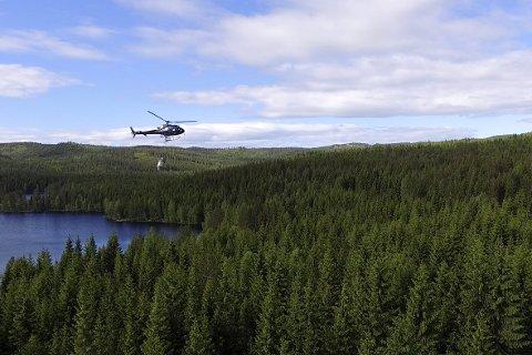 GJØDSLING FRA HELIKOPTER: Et område ved Glitra ble gjødslet med nitrogen via helikopter 13. juni i år.