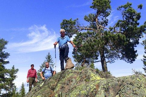 På toppen: Drillo & Co har nådd dagens turmål, Trettekollen, Nedre Eikers høyeste punkt (607 moh) og grensetopp med Lier kommune.