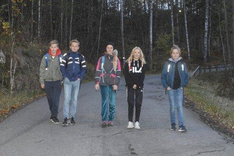 Farlig: F.v. William Bjørnstad Wahl, Kristoffer Dale, Hedvik Kristine Snøfring, Lisa Mathilde Fjellsøy og Håvard Norland Skøien (7.-klassing) er fornøyd med Fylkesmannes beslutning.