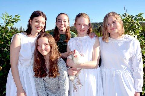 GLEDER SEG: Både skomper, pirildere og mennesker ser frem til utendørsteater på Vestre Kjenner gård. Fra venstre: Isabel Røed Lampl (16), Thea Louise Oftedal-Halsen (13), Nora Stabæk (14), Ida Nedal Kværnstuen (17)(med høna Unni) og Mia Øveraas Krokaas (16).