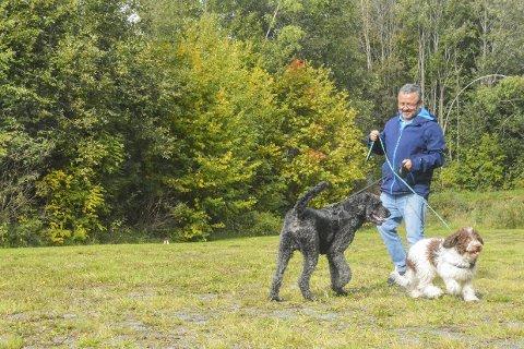 I bånd: Bruno og Fenris må leke med hverandre i bånd inntil videre. Prosjektansvarlig for hundeparken Ricardo Leiva, håper gjerdet snart er på plass.