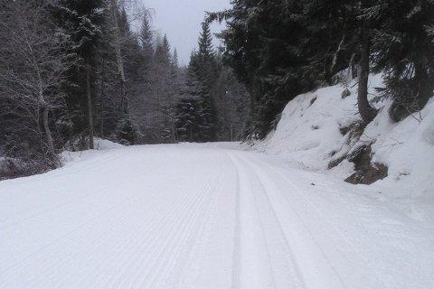 Fortsatt fine forhold for ski i Lier. Dette bildet er fra Eiksetraområdet for to år siden.