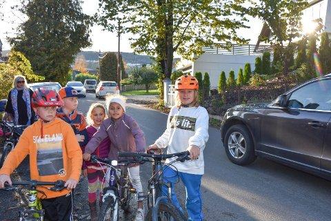 Redde: Barna i Kjellstadveien sier det skummelt å ferdes langs veien. F.v. Markus Nakkerud (8), Emil Nakkerud (8), Vilje Vatndal (6), Ida Stenseth (8) og Max Michaelsen (11).