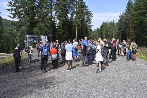 Stor leteaksjon: Mange mennesker møtte i sommer opp for å lete etter meteoritten som skal ha landet i Finnemarka.