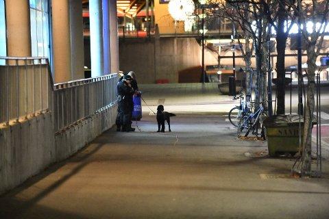 Jaktet ungdommer: Politiet jaktet fem ungdommer etter et angrep på en vekter i Kanalveien i Lillestrøm tirsdag kveld. Ungdommene ble etter hvert pågrepet.