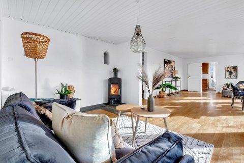 SMART: Kommunen mener det var smart å bruke penger på å style boligen med blant annet sofa, puter og falske planter.