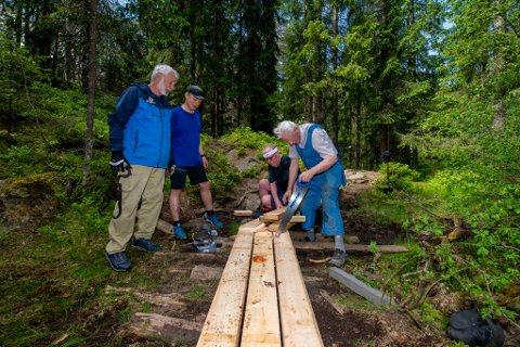 GANGBANER: Svein Skutle (f.v.), Knut Tokstad, Ragnar Kråkenes og Kjell Hauger sørger for at turstien Blåløypa på Fjellhamar er godt vedlikeholdt.