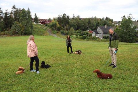 MØTEPLASS: Kari Muri (t.v.), Amanda Myhre og Nils Gustav Roland, synes det er fint å møte andre hundeeiere. Nå håper de at det etableres et hundejorde på Vallerud i Lørenskog.