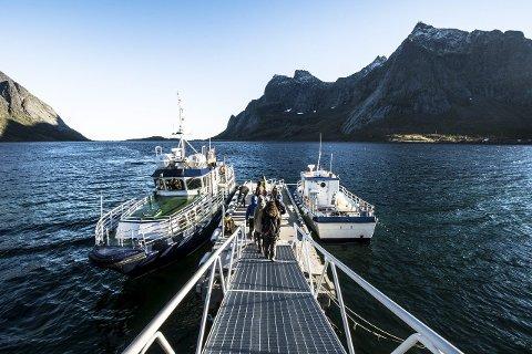 Oppdrett: Moskenes kommune nevner ikke fiskeoppdrett i ny kommuneplan. – Fordi vi ikke ønsker oppdrett i Reinefjorden, sier varaordføreren.