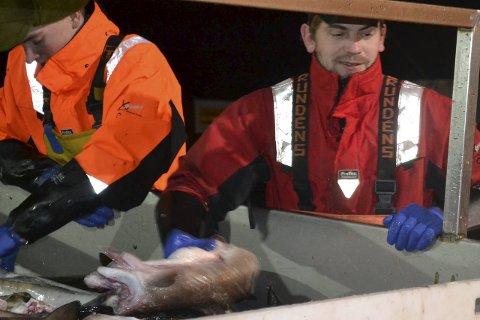 Hjalp til: Stig Atle Sivertsen, skipper på «Eros» tok om bord den overlevende fra sjarkforliset ved Røst mandag. Han hoppet fra baugen av båten til livbøya da redningsskøyta startet slepet. Arkivfoto