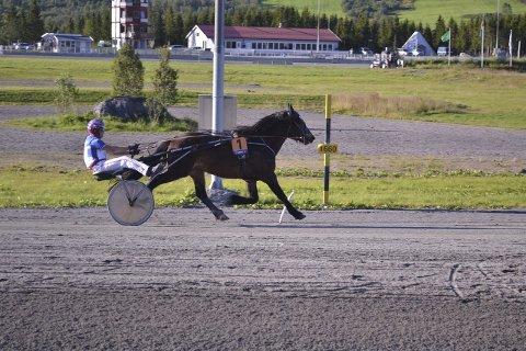 SEIER: Stian Pettersen loset Atom Vito inn til en knepen seier på Harstad travpark. Foto: Per Steinar Tangen