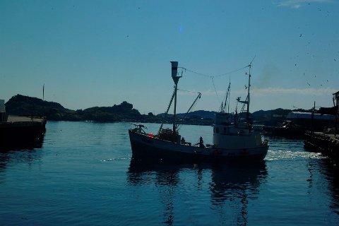Gransker: «Jan Bjørn» er nå på slip i Grovfjord. Arkivfoto