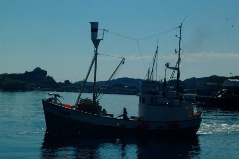 OMKOM: Jan Kristiansen var alene om bord på «Jan Bjørn» da han falt over bord og omkom. Arkivfoto