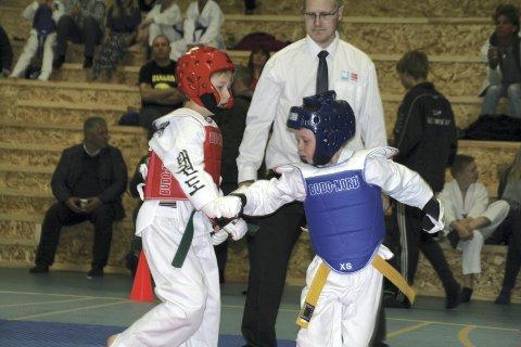 Mer arbeid og kjøring: Stig Arne J. Gundersen i Vågan taekwondo & hapkidoklubb beklager at rutekutt har ført til at mesterskapet i februar ble avlyst.