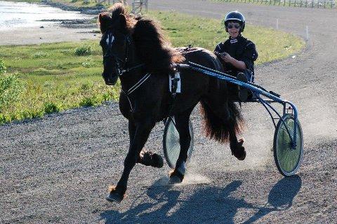 DRAMATIKK: Lørdag ble travkusk Sigmund Jakobsen kastet ut av sulkyen og ble hengende etter hesten. Dette bildet er fra en treningstur på Lofoten travpark. Foto: Kai Nikolaisen