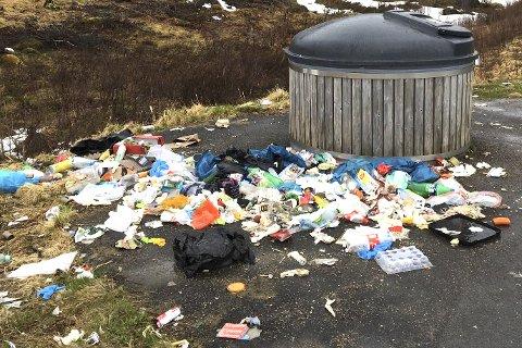 Oppgitt: Espen Thorvaldsen er oppgitt over dette synet som møtte ham ved rasteplassen Møysalen på Lofast torsdag i forrige uke. Han mener vegvesenet må ta grep for å håndtere situasjonen. – Sånn kan vi ikke ha det, sier han. Statens vegvesen opplyser at containerne i denne saken ble tømt fredag morgen, men John Roger Sørvang i vegvesenet sier problemet med bedrifter og lokale som fyller containerne er stort.Begge foto: Privat