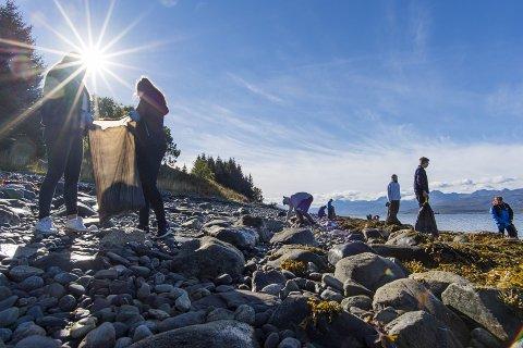Strandsøppel: Det blir strandrydding med gjester og mannskap fra 11 hurtigruteskip langs kysten av Norge på tirsdag. Foto Ørjan Bertelsen