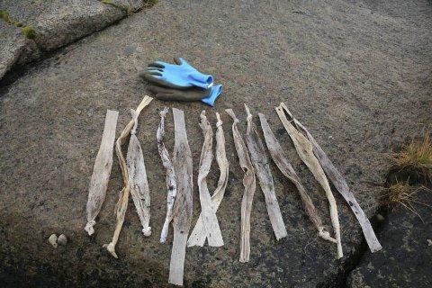 Mysterium: Disse plastposene er dukket opp i strandsonen i Laukvik i sommer. Hva de brukes til, og stammer fra, kan kanskje noen fortelle Lofotpostens lesere.Foto: June Grønseth