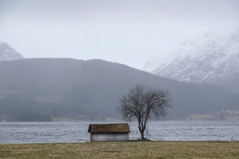 . Hva er det som gjør at våre politikere i Nordland, har et helt annet syn enn deres partikolleger sentralt?