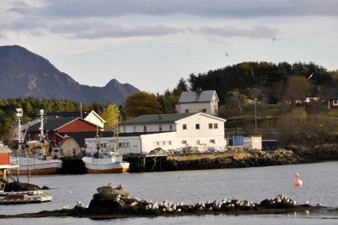 SJØMATPRODUSENT. Arctic Harvest AS holdt til i leide lokaler på Hjellskjæret på Ballstad.