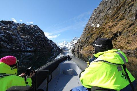 RIB-safari i Trollfjorden