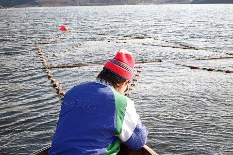 SKAL NEKTES: Om en sjølaksefisker gjør noe ulovlig, skal vedkommende kunne nektes registrering for videre fiske hvis Klima- og miljødepartementet får det som de vil. (Illustrasjonsfoto)