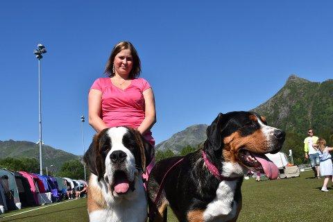 Vågan hundeklubb arrangerer hundeutstilling i Laukvika neste helg. Bildet er fra fjorårets hundeutstilling i Svolvær.