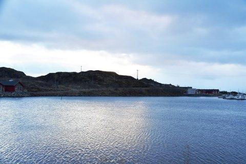 HYTTEBYGGING: Fylkesmannen mener det ikke bør bygges hytter i området ovenfor Kræmmarvikveien på Ballstad.