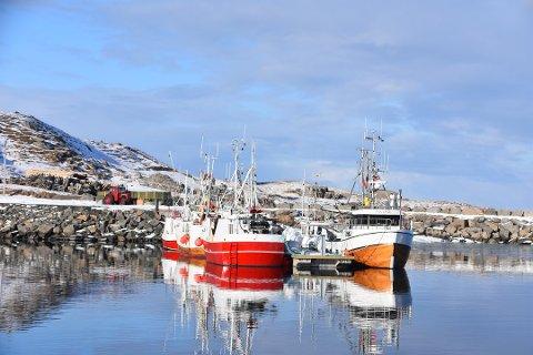 ILLUSTRASJON: Flytebrygga på Eggum ble etablert i 2018. Dette bildet er kun ment som illustrasjon og alle båtene på bildet er fiskeriregistrerte.
