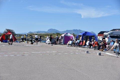 DOGSHOW: Lofoten Dogshow 2020 arrangeres lørdag og søndag, med 800 hunder til utstillingen, her fra fjorårets arrangement.