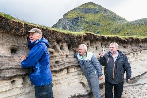 INSPEKSJON ETTER HEKKESESONGEN: Johan Sirnes (nærmest) og Ivar Andersen sjekker hvor langt de får armene sine inn i reirhullene. Bak står Eldar Andersen som har funnet en fjær.