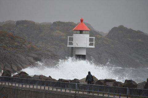 Farlig ferdsel: Farlig ferdsel på moloen i Kabelvåg i ettermiddag.