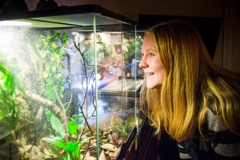 NATTELIV PÅ NAPP: Stine og gekkoene synes det er herlig å være oppe om natta når de andre har lagt seg. På dagtid jobber 32-åringen i Lynghaugen barnehage på Leknes.