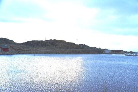 TOMT: Det er denne ubebygde tomta mot sjøen er nå solgt.