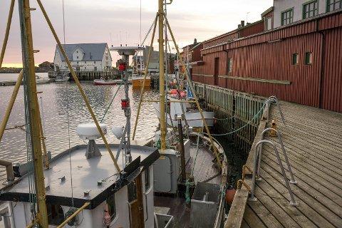 REKORD: Fiskeriene går godt i Norges Råfisklags distrikt. Fangstverdien økte med 19 prosent i 2016 fra forrige rekord i 2015. Av rekordtallet på 11,5 milliarder kroner, dro norske fiskere i land 9,1 milliarder kroner. På bildet ser vi sjarker til kai i Stamsund. FOTO: MARTIN KRISTIANSEN