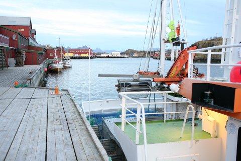 ILLUSTRASJONSFOTO: Båter til kai i Stamsund.