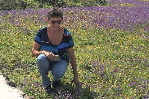 """""""Blomsterprakt i Ye, Lanzarote, skriver 70-årsjubilanten Ruth Jusnes fra Ramberg om dette bildet."""
